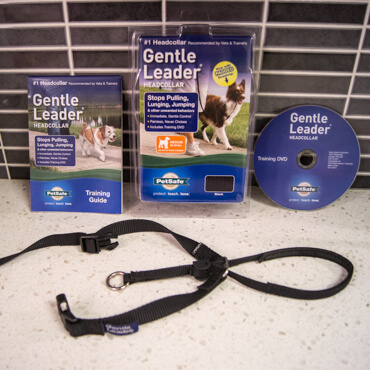 Favorite Collars - The Gentle Leader
