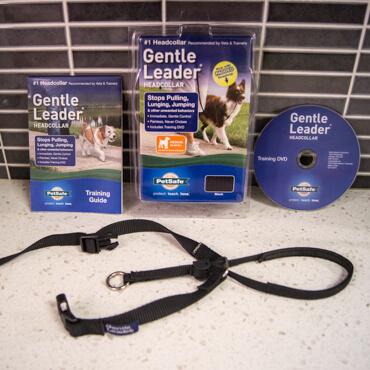 Gentle Leader in Package