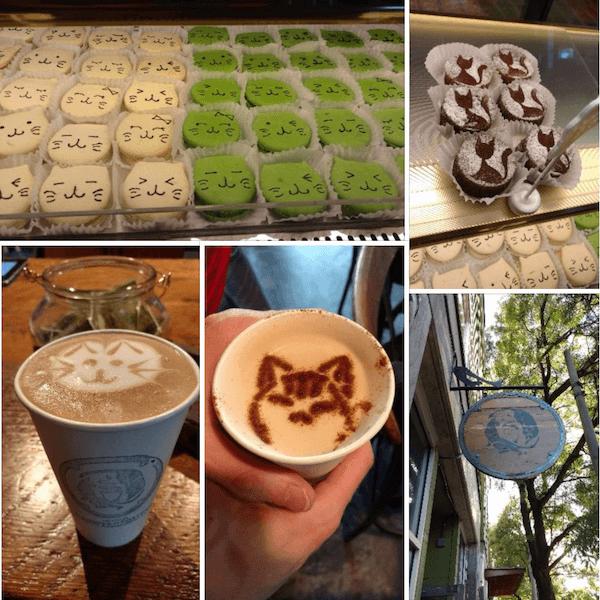 Cat Cafe Visit!